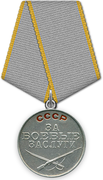 https://pamyat-naroda.ru/local/templates/pn/img/awards/new/Medal_Za_Boevye_zaslugi.png